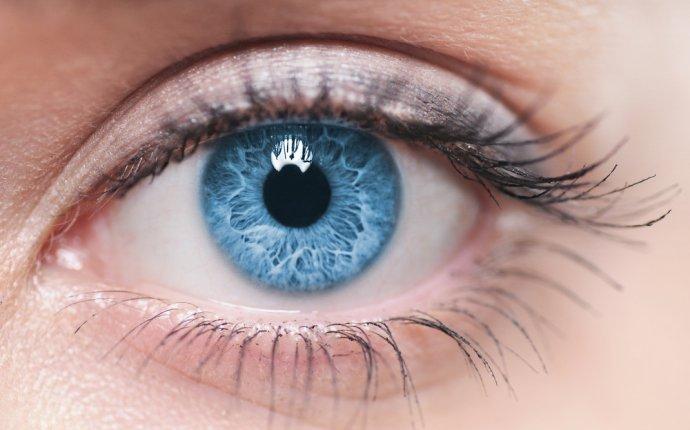 Устройство глаза - узнайте, как устроен глаз человека